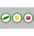 Vegetables Labels Set vector image