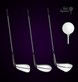 Golf ball and golf stick on the dark background vector image vector image