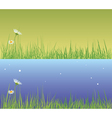 field grass day and evening vector image