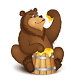 The bear eats honey vector image