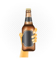 small beer bottle in hand vector image vector image