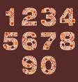 number floral warm autumn decorative elements vector image