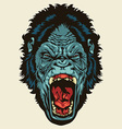 Angry Gorilla Head vector image