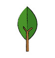 green leaf natural environment ecology symbol vector image