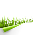 Green grass with ripped paper sheet isolated on vector image