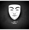 Mask anonymous on black vector image