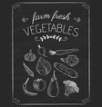 vegetables doodle on the black board vector image