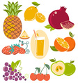 set of fresh fruits isolated on white vector image