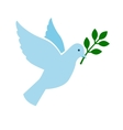 Bird peace symbol vector image