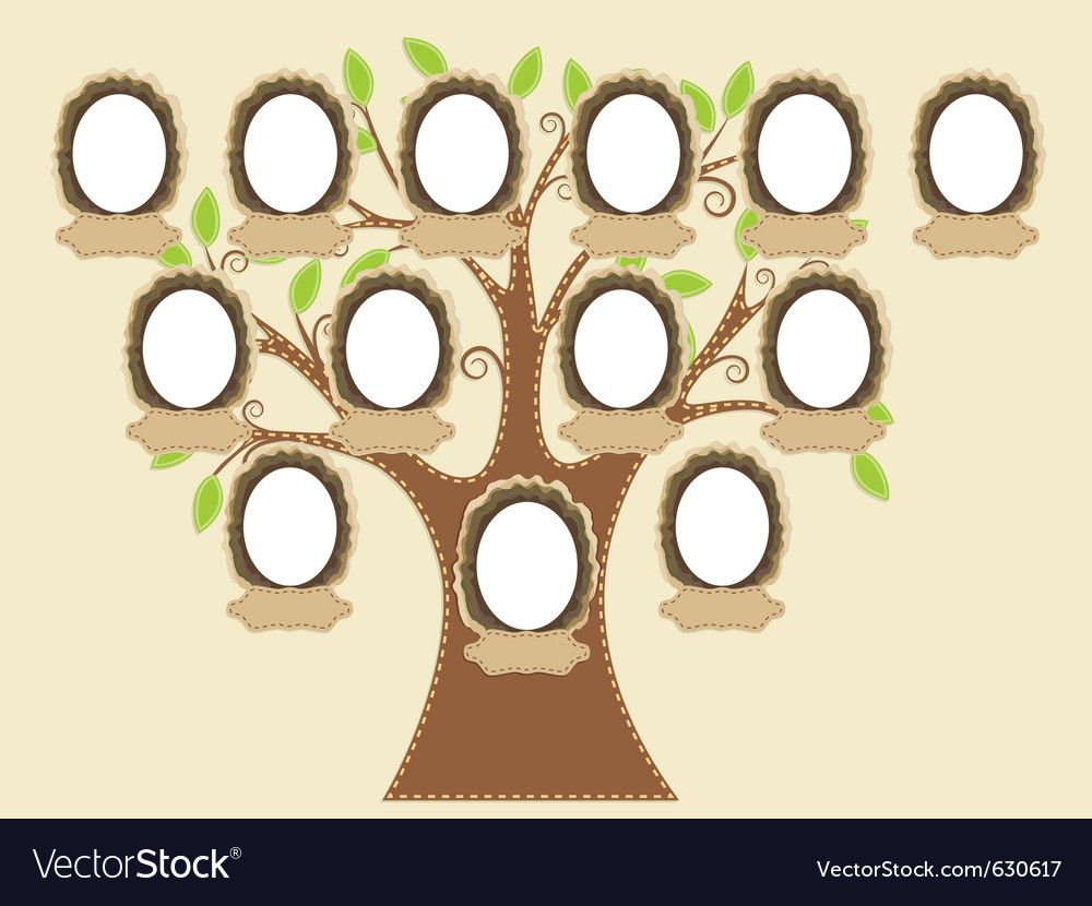 Family tree empty frames vector