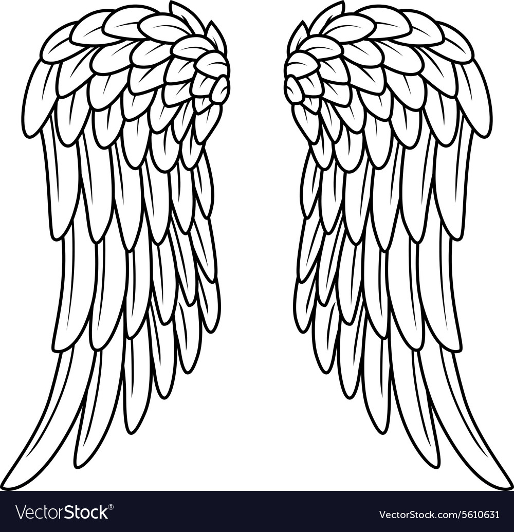 Cartoon angel wings vector