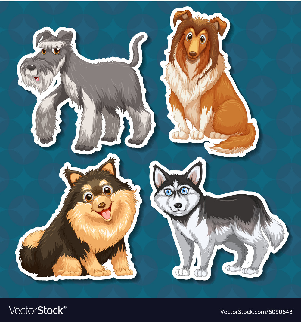 Different type of dogs vector