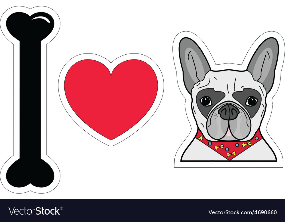 I love french bulldog with scarf vector