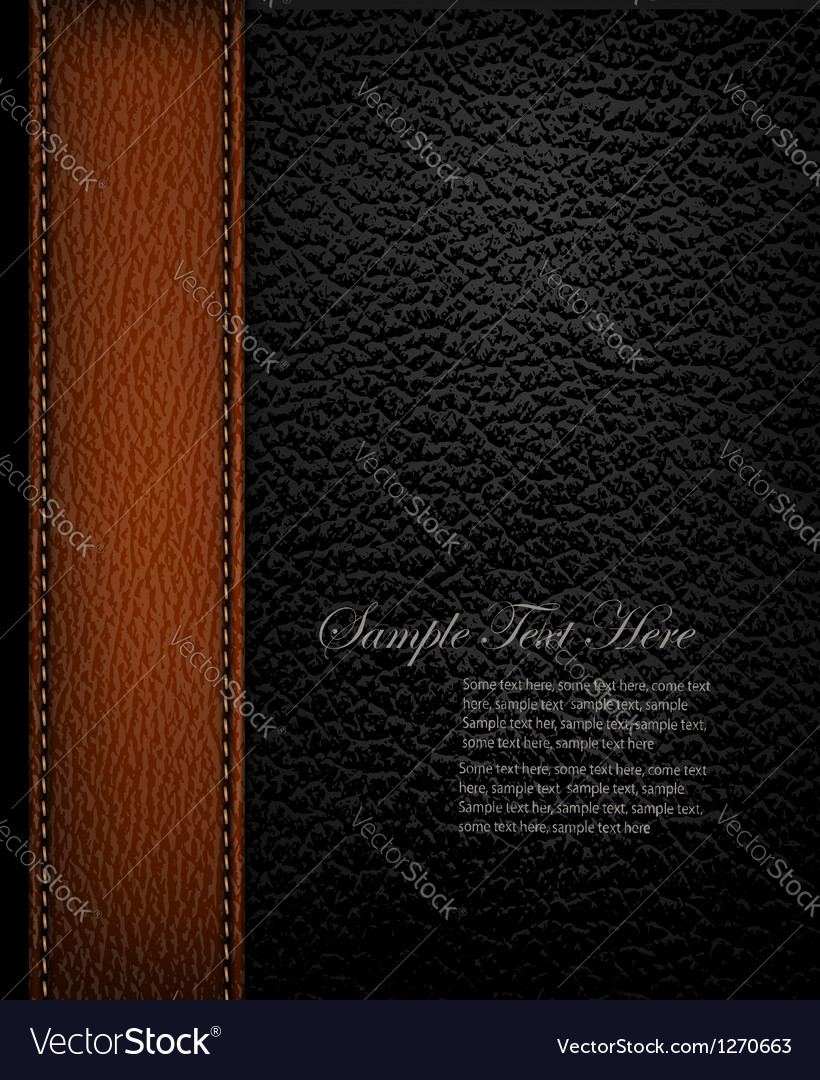 Black leather background with brown leather strip vector