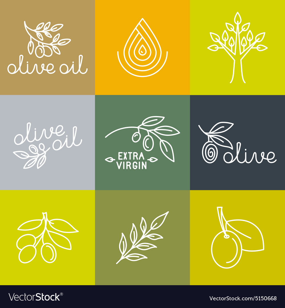 Olive oil icons and logo design elements vector