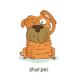 Shar pei Dog character isolated on white vector image
