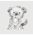 hand drawn dog vector image vector image