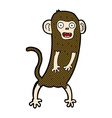 Comic cartoon crazy monkey vector image