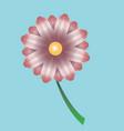 bright beautiful flower vector image