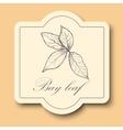 Hand drawn raw bay leafs sketch vector image