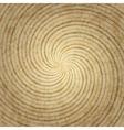 Stylish wood background vector image vector image