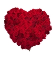 Valentines Day Heart Made of Red Roses EPS 10 vector image