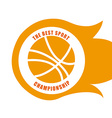Basketball design over white background vector image