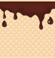 Chocolate dripping on waffle vector image