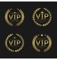 Golden VIP badges vector image
