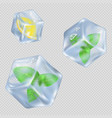 ice cubes with mint leaves and lemon vector image