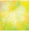 background wildflowers vector image vector image