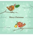 Christmas card with birds vector image vector image
