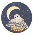 Barn Owl on a Tree Stump2 vector image
