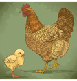 engraving chicken and chick retro vector image