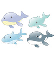 Dolphin Shark Whale and Killer Whale vector image