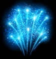 Holiday fireworks vector image