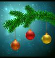 fir tree with 3 christmas balls vector image