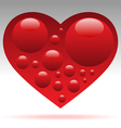 heart with blood cells vector image