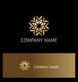 circle flower geometry gold logo vector image