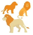 Cartoon lions set vector image vector image