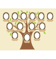 family tree empty frames vector image