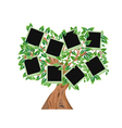 green tree with frames for your photos vector image
