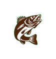 Walleye Fish Jumping Isolated Retro vector image