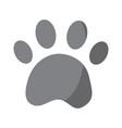 paw print pet shop concept vector image