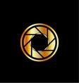 Golden photography logo vector image