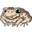 toad amphibian cartoon vector image