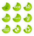 Eco Sticker Set vector image vector image