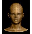 Human gold head vector image