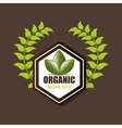 organic food product vector image