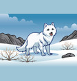arctic fox in the snowy winter vector image